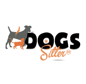 Dogs Sitter 57
