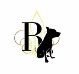 """Reahly Dog, <a href=""""https://www.comportementaliste-animal.com"""" target=""""_blank"""">Accessoires stylés et haut de gamme</a>"""